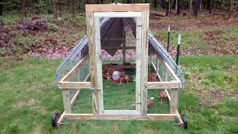 stress free chicken tractor plans pdf