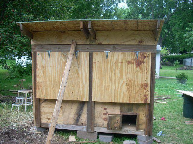 http://www.backyardchickens.com/forum/uploads/10160_dscn1490.jpg