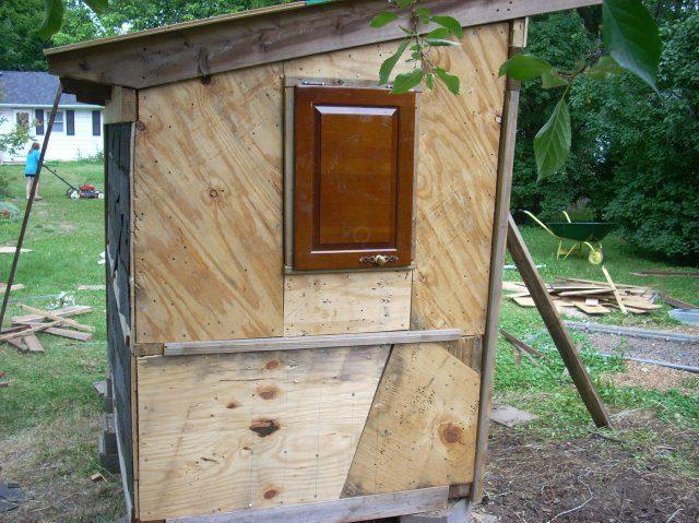http://www.backyardchickens.com/forum/uploads/10160_dscn1493.jpg