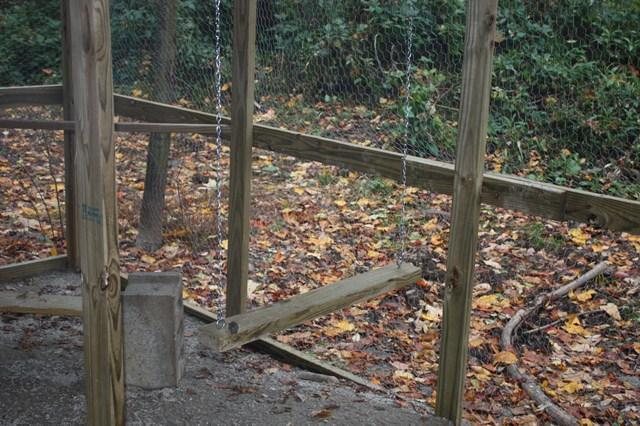http://www.backyardchickens.com/forum/uploads/103160_img_0355.jpg