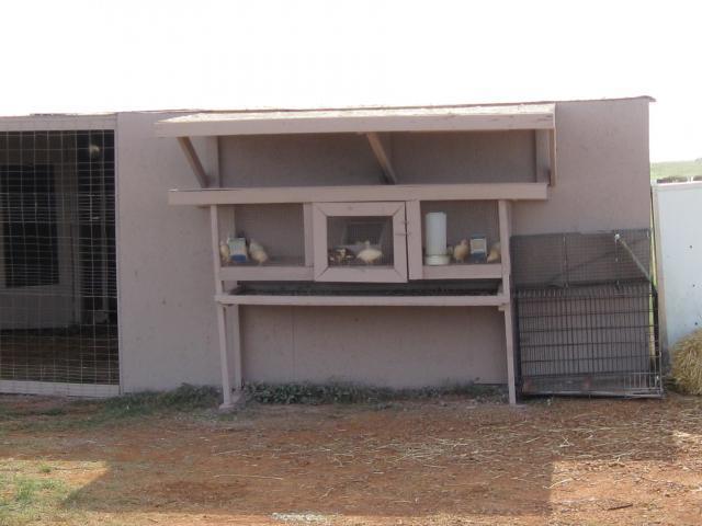 http://www.backyardchickens.com/forum/uploads/10364_img_0387.jpg