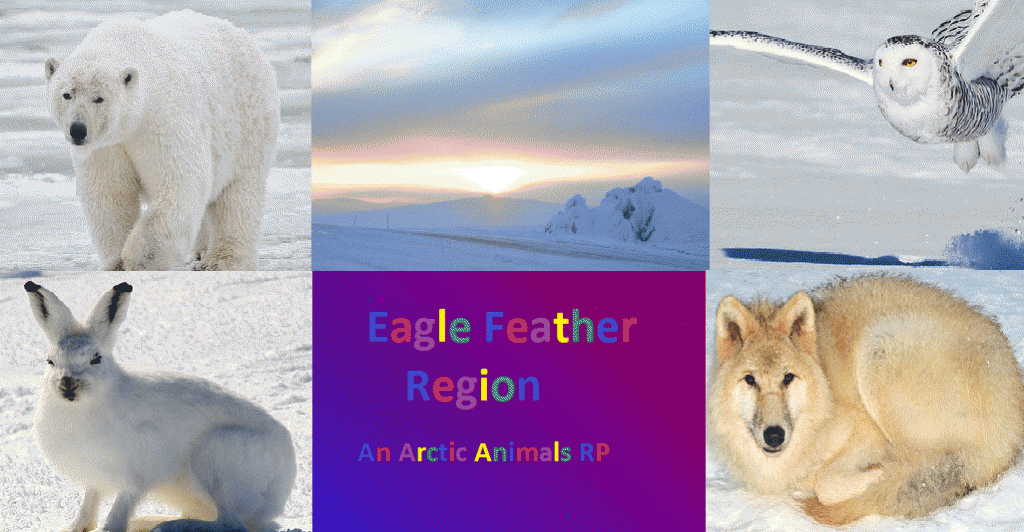 104779_eaglefeather.png