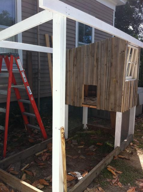 siding on coop