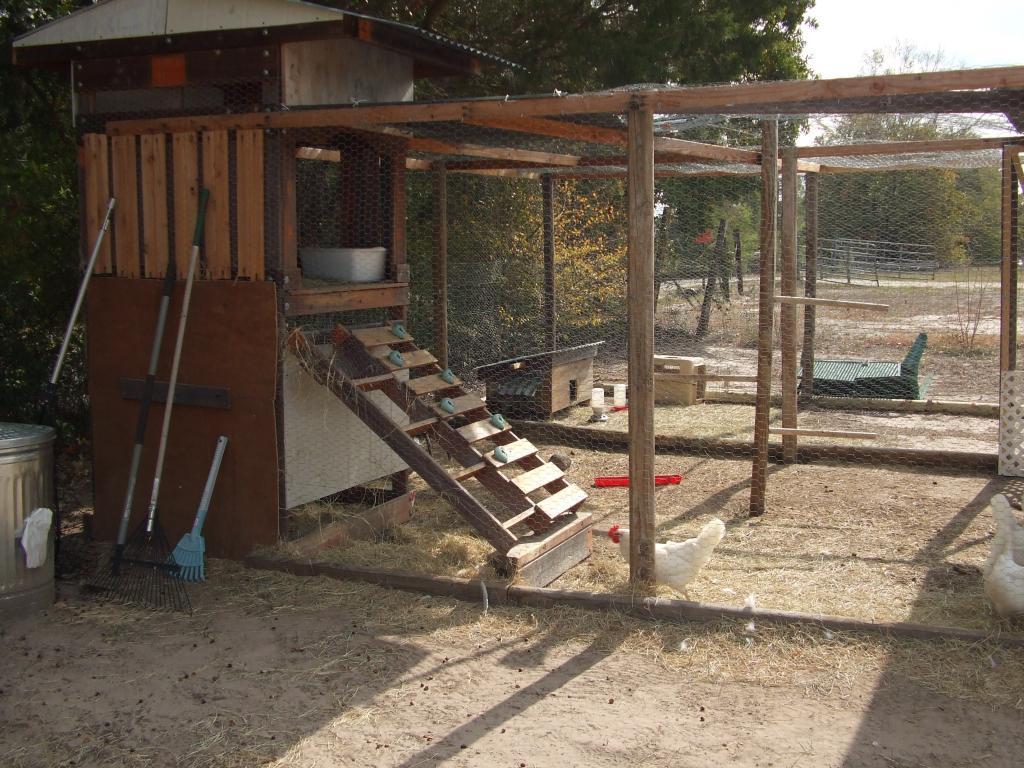 http://www.backyardchickens.com/forum/uploads/106988_dscf1559.jpg
