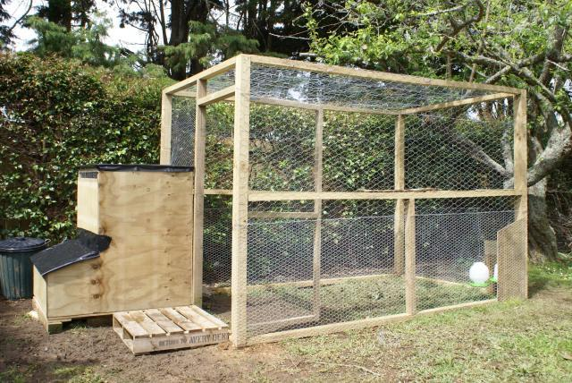 The drummonds chicken coop backyard chickens for Building a dog kennel business