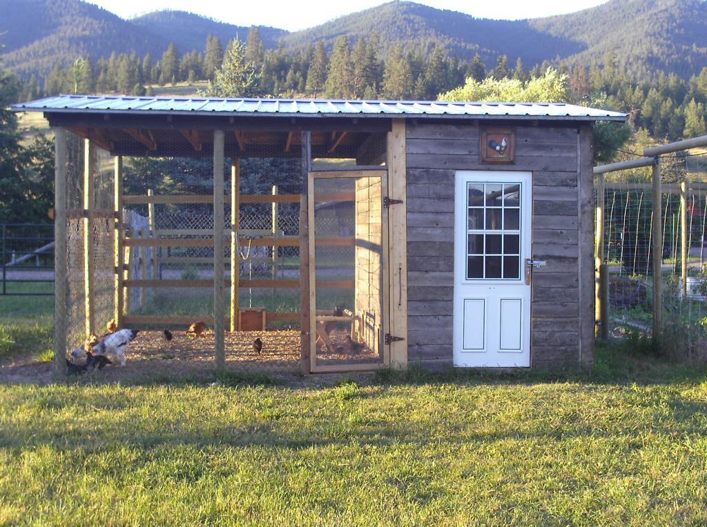 post your chicken coop pictures here  page 15 Poultry House Doors Poultry House Doors