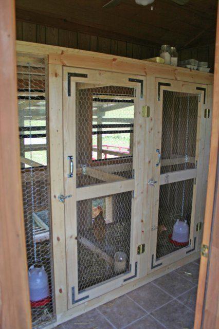 http://www.backyardchickens.com/forum/uploads/12098_cabincoopinside.jpg