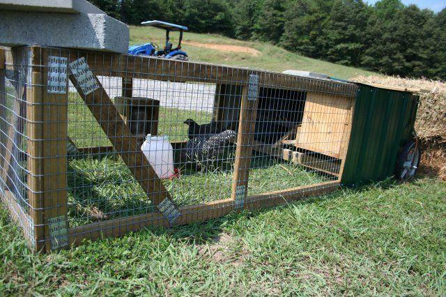 http://www.backyardchickens.com/forum/uploads/12098_chickentractorside.jpg