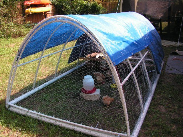 Build Pvc Chicken Tractor : New pvc chicken tractor just finished