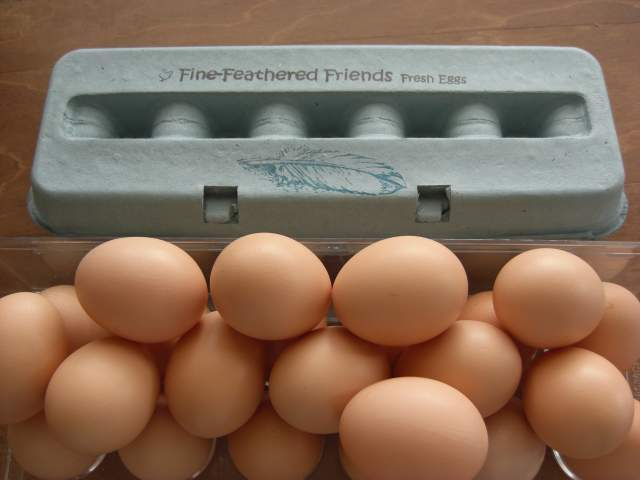 Pictures of Personalized Egg Cartons