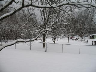 Front Yard In Snow