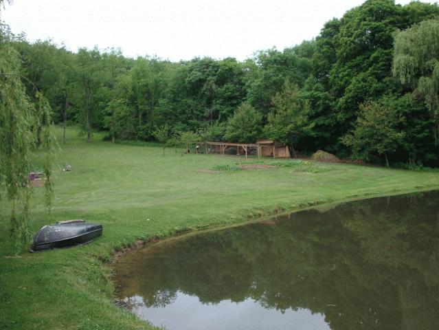 Tonini3059 39 s page backyard chickens community for Backyard duck pond