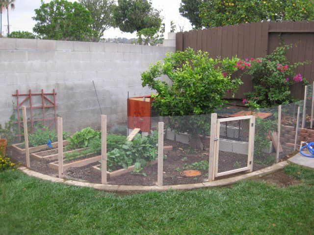 The gallery for enclosed vegetable garden design for Enclosed vegetable garden designs