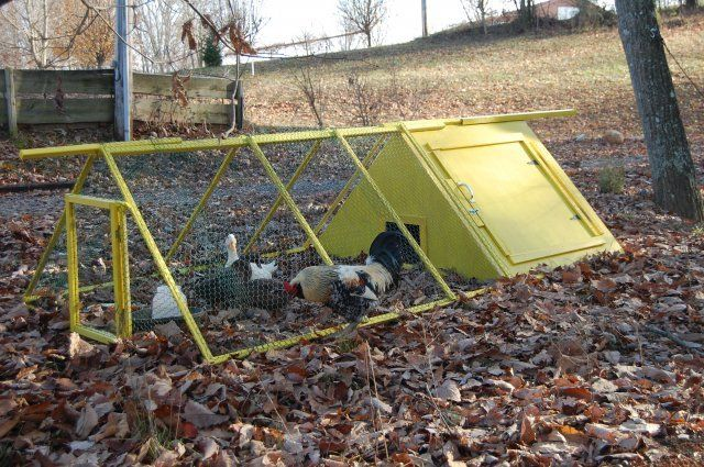 Fav duck and chicken pens on pinterest duck house duck for Duck run designs