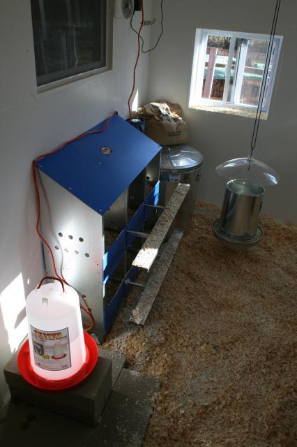 Corner Coop Inside Barn Garage Backyard Chickens Community
