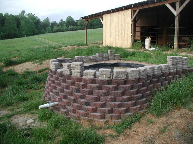 Diy Backyard Duck Pond : httpwwwbackyardchickenscomforumuploads22156p1010013jpg