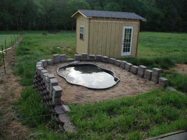 Backyard Duck Ponds duck pond/pool suggestions | backyard chickens