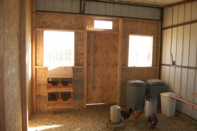 Daisychicks new chicken coop backyard chickens for Chicken coop interior designs