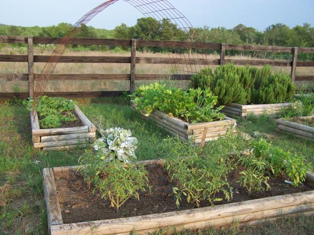 Raised Garden Beds Out Of Landscape Timbers U2013 Izvipi.com