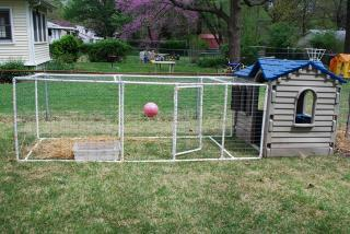 What does your duck house look like backyard chickens for How to build a duck pen house