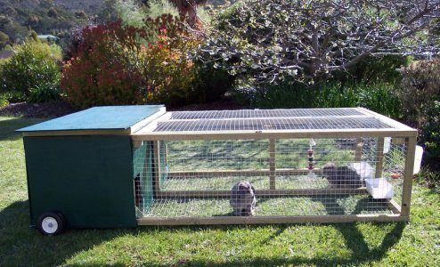 New bunny owner double bunny hutch is done pix inside for Outdoor guinea pig cage
