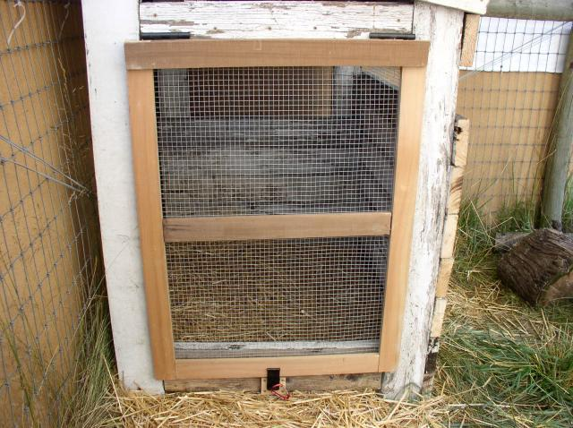 Duck coop backyard chickens for Duck shelter designs