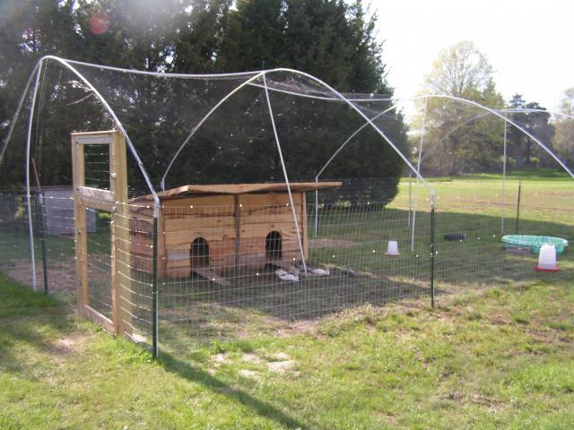 Little duck homes on pinterest duck coop duck pens and for How to build a duck pen house