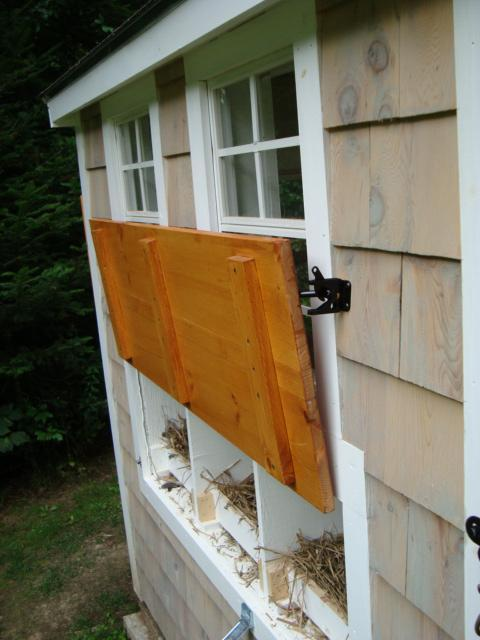 nest box2