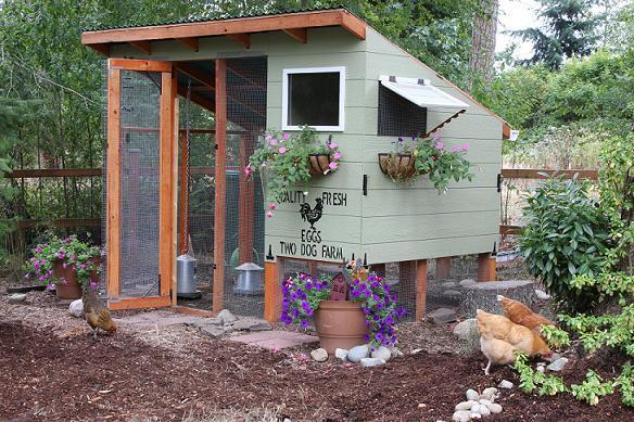 Cute Backyard Chicken Coops : Two Dog Farm Chicken Coop  BackYard Chickens Community
