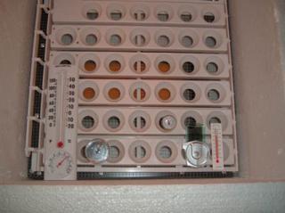 26580_sink-a-bator.jpg