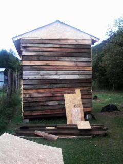 http://www.backyardchickens.com/forum/uploads/26911_072109_132102.jpg