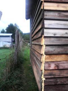 http://www.backyardchickens.com/forum/uploads/26911_072109_132700.jpg
