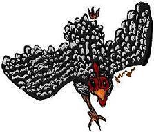 26999_chicken_by_twifferluffsmomiji.jpg