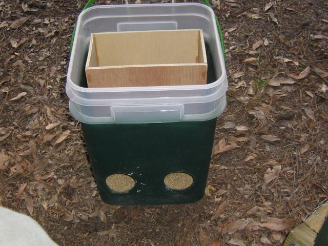 http://www.backyardchickens.com/forum/uploads/27344_img_1528.jpg