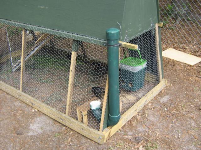 http://www.backyardchickens.com/forum/uploads/27344_img_1550_800x600.jpg