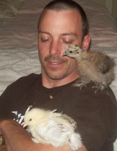 27552_dave_and_chicks.jpg