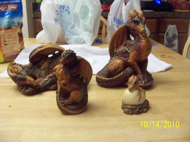 29766_brown_dragons_002.jpg