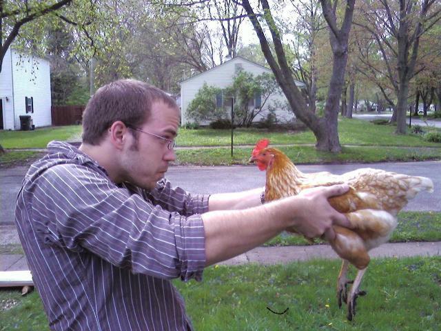 http://www.backyardchickens.com/forum/uploads/29976_0502091521.jpg