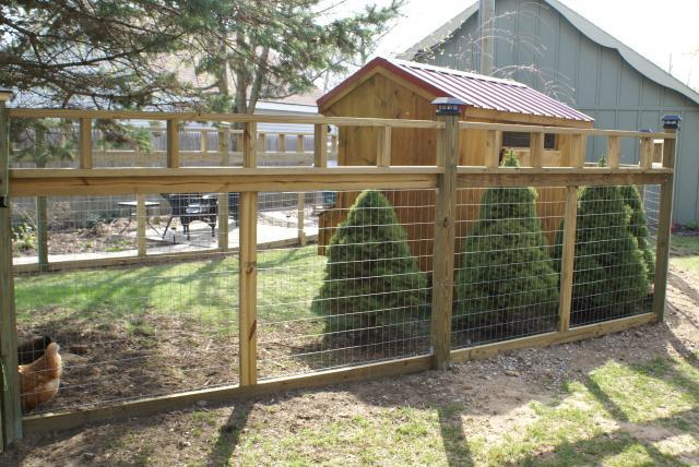 gellencoop: How to build a varmint proof chicken coop