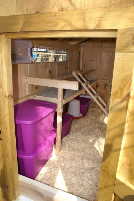 San415s Chicken Coop Brooders And More Backyard Chickens