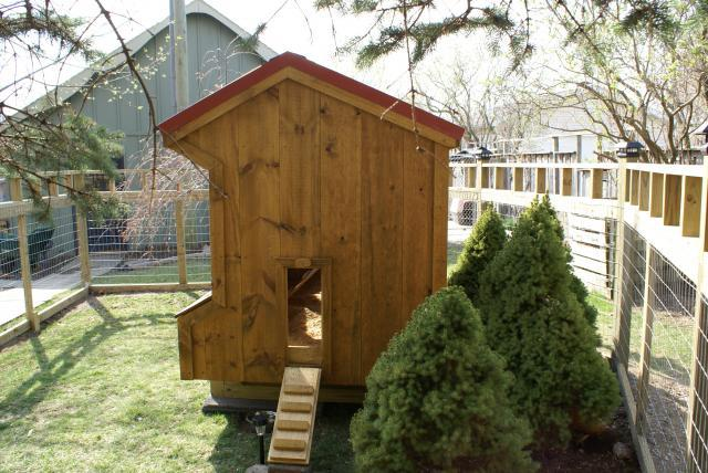 San415 39 s chicken coop brooders and more backyard for Gazebo chicken coop