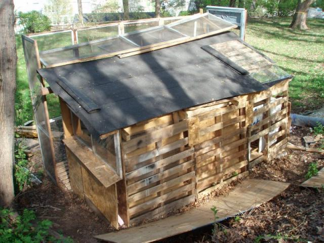 Chicken coop from pallets backyard chickens community for Pallet chicken coup