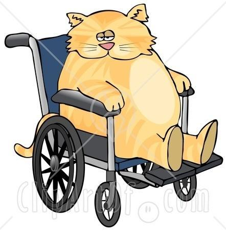 31967_6323-chubby-orange-cat-sitting-in-a-wheelchair-in-a-hospital-clipart-picture.jpg