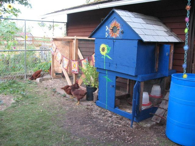 Backyard Homestead Layouts http://www.backyardchickens.com/a/homestead-holdouts-dog-house-design