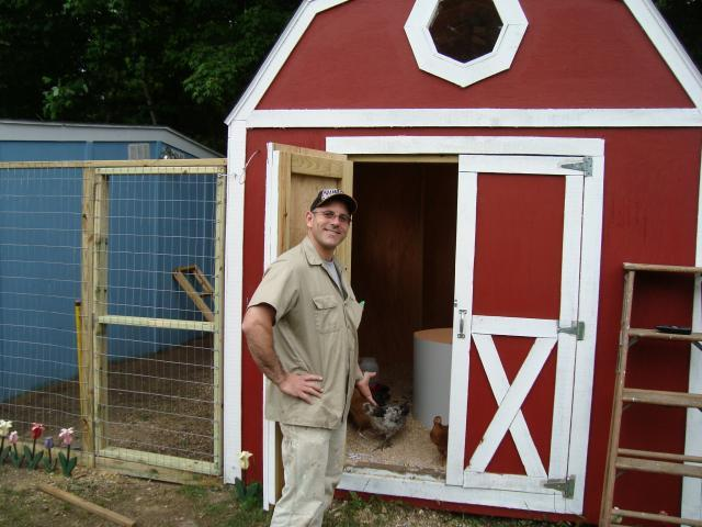 33869_the_chicken_shed.jpg
