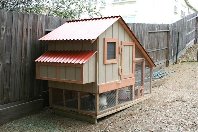 Silkie Coop Backyard Chickens