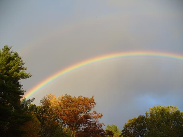 34755_rainbow.jpg