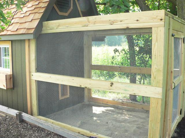 Kriquet S Chicken Coop Backyard Chickens Community