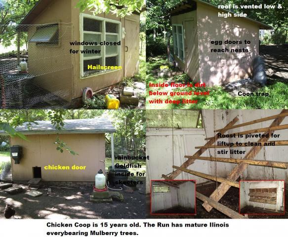http://www.backyardchickens.com/forum/uploads/36435_chickencoop.jpg