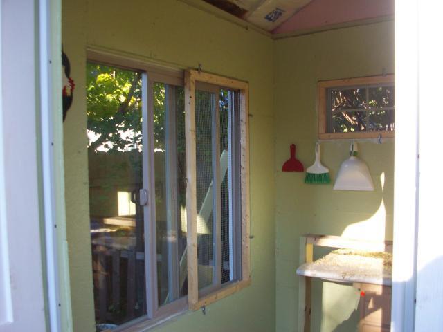 36893_window.jpg